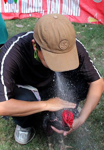 cách làm nước gà chọi