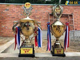 Cúp vô địch đá gà Campuchia
